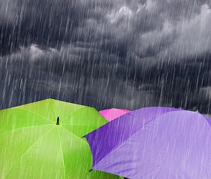Umbrellas_in_the_Rain